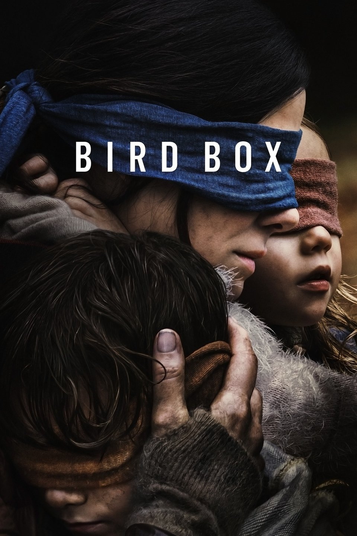 bird box